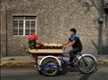 bicycle flower delivery