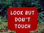 "sign that reads ""Look But Don't Touch"""