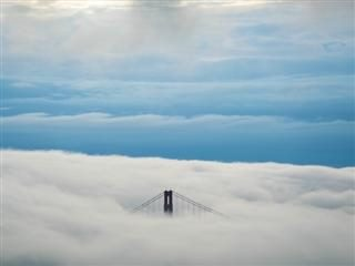 Top of Golden Gate Bridge peeking out of cloud cover
