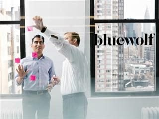 IBM buys bluewolf