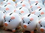 sea of piggy banks