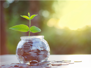 A young healthy plant growing in a jar full of change - Investment concept