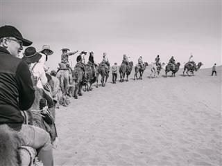 line of people riding camels in the dessert following a tour guide who is waving from the front of the line