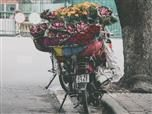 motorcycle laden with a flower delivery
