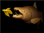 big fish eat small fish, the strong overwhelm the weak, striving for existence, existential battle - acquisition concept