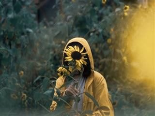 woman hiding her face with a sunflower
