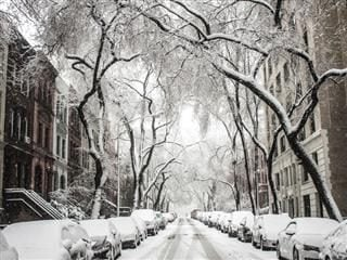 winter on a residential street in NYC