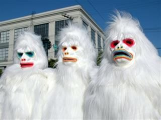 triple Yeti sighting