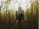 A microphone in an outdoor wooded setting - brand voice concept