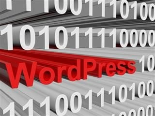 Wordpress written within a page of code. Security plugins for Wordpress CMS