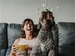 A young girl having a fun afternoon with her dog, sitting on the sofa eating popcorn - emotional connections concept