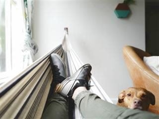 person on an indoor hammock with a dog