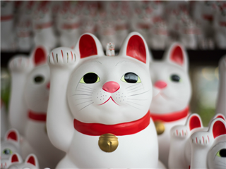 "Maneki-neko - Japanese cat figurine, aka ""fortune cat"""