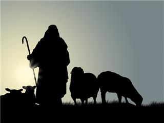 silhouette of a shepherd with two sheep