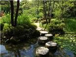 Japanese stepping stones in the famous Heian Shrine in Kyoto - Digital Transformation Steps