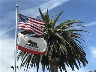 California State Flag flying under US flag with palm tree in the background