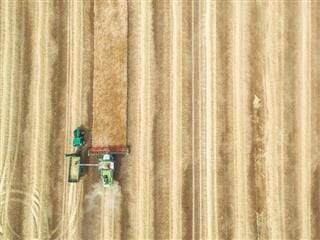 bird's eye view of farmer ploughing fields