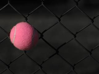pink tennis ball stuck in a cyclone fence
