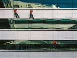 three window washers on ropes