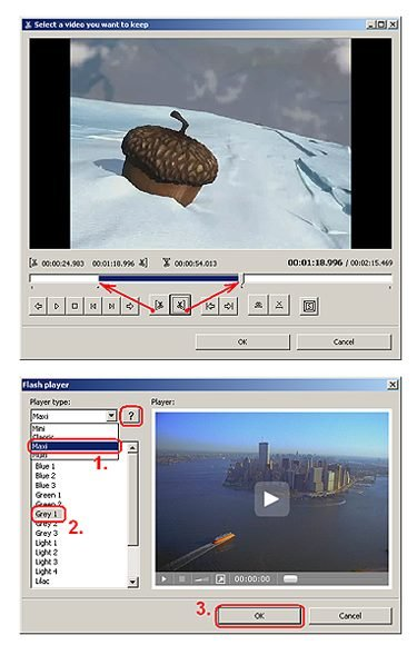 Video to Flash Converter User Interface