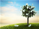 A tree with dollar bills for leaves with a beautiful blue sky, with white clouds background