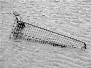 drowning shopping cart