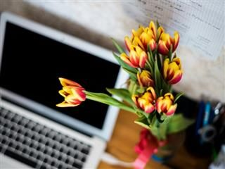 tulips on a desk near a computer