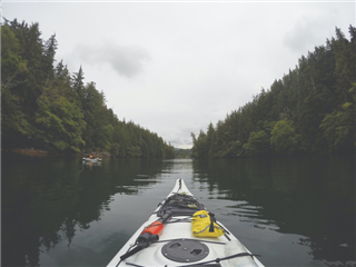 A kayak aimed up river in a forested area