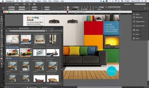 screenshot of adobe indesign and canto cumulus digital asset management system at work