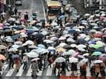 busy intersection filled with people holding umbrellas