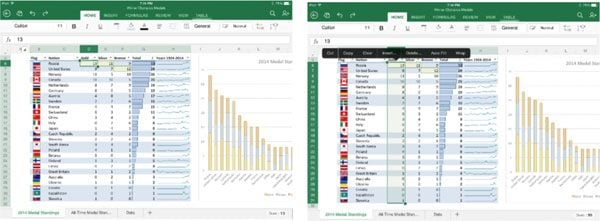 2014-08-04 ipad for office upgrades excel.jpg