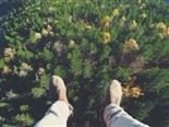 feet dangling in a forest