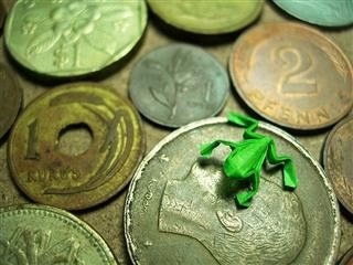 toy frog on a coin