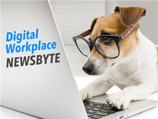 Digital workplace newsbyte - a wrap up of all the digital workplace news of the week.