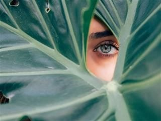 a woman's eye visible in the middle of a large leaf