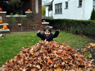 jumping into fall leaves