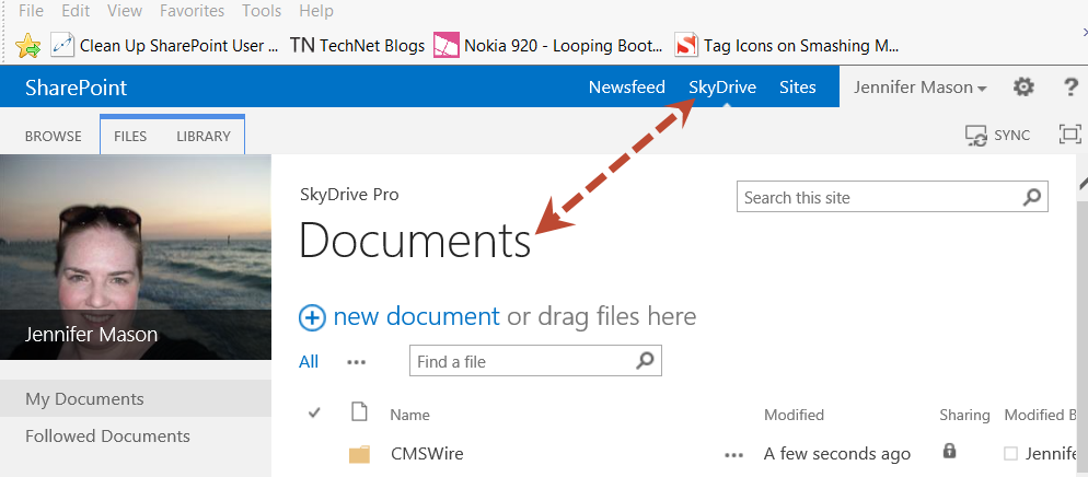 SkyDrive Pro Documents