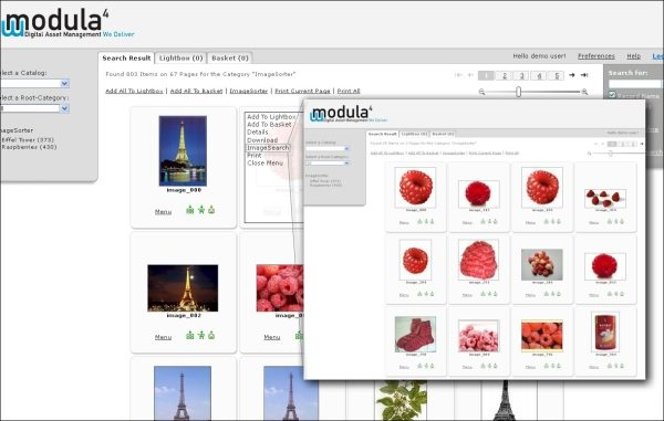 ImageSearch in the new Web Module for Canto Cumulus from Modula4