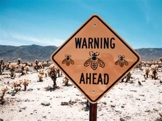 warning, bees ahead sign