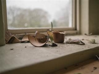 broken pottery on a windowsill