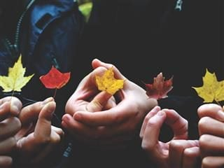 five leaves in hand, symbolizing the changes of the seasons