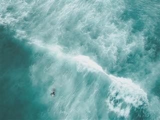 surfer paddling out to get ahead of a wave, bird's eye view