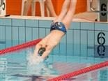 swimmer diving into the pool