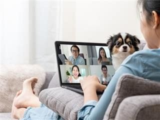 Woman on sofa and team on laptop screen talking and discussion in video conference with dog on her lap.