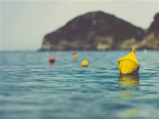 buoys guiding the journey