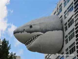How Forrester Views its 10 Web Content Management Sharks