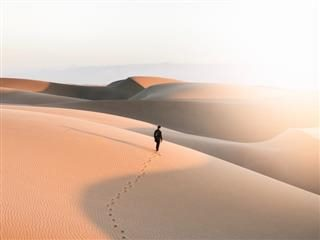 person walking through dessert under hot sun